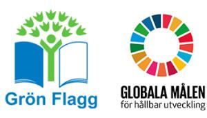 Grön flagg och Globala målen