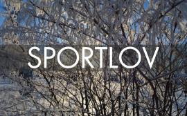 snöiga träd i motljus med texten SPORTLOV