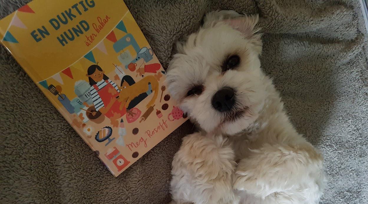 Hund ligger på rygg i sängen med en bok