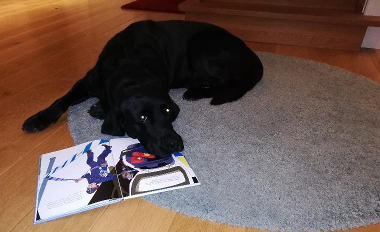 Hund på matta med en uppslagen bok.