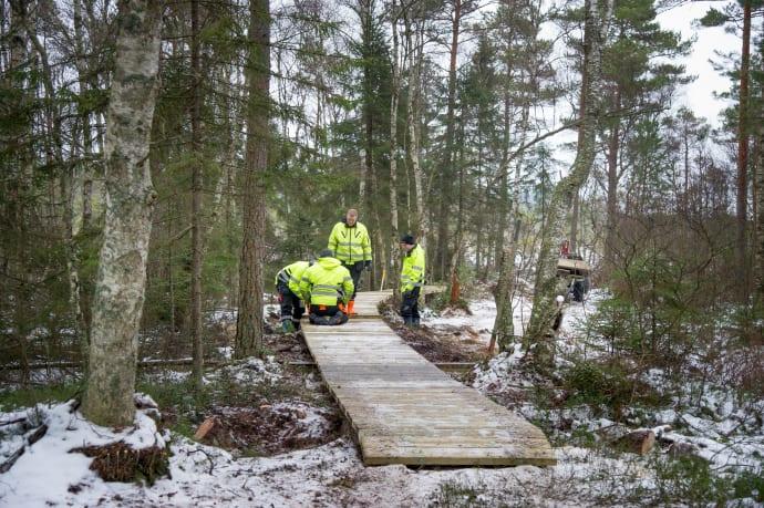 Ny vandringsled från Bastöna till Rösjö mosse byggs.