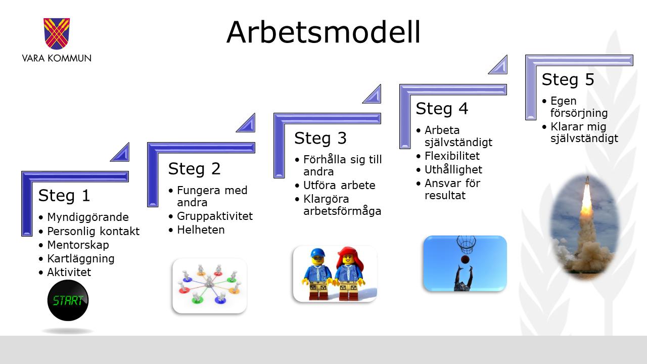 En modell i fem steg som enheten arbetar med.
